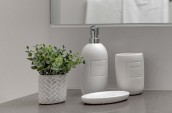 matching bathroom soap dispenser, toothbrush holder, and soap dish beside a small green plant